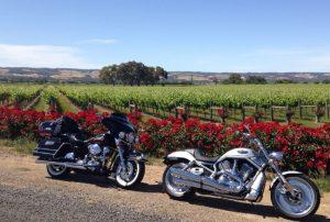 mcLaren vale motorcycle tours | 2021